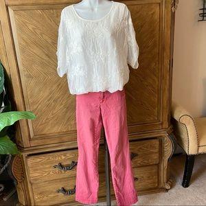 pilcro and letterpress hyphen fit pink khaki pants